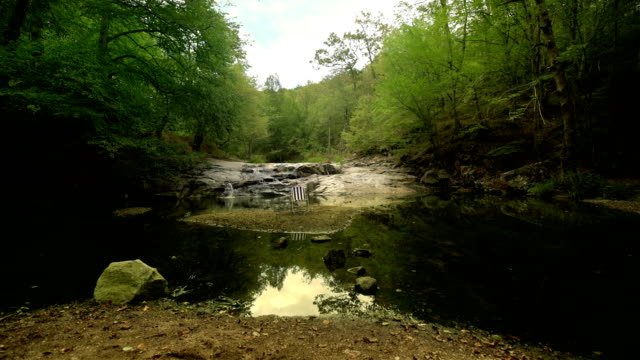 river view in the forest - 4k resolution - distillery still stock videos & royalty-free footage
