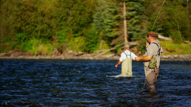 river wading males fly fishing in american wilderness - wilderness stock videos & royalty-free footage