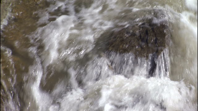 a river washes over a boulder. - rapid stock videos & royalty-free footage