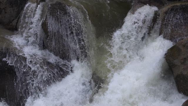 vídeos de stock e filmes b-roll de river water fall - reserva selvagem