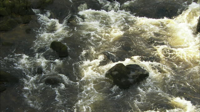 river water flowing over rocks, close up, uk - eroded stock videos & royalty-free footage