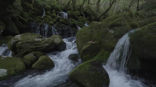 river waterfall in akita, close up - 秋田県点の映像素材/bロール