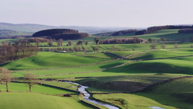 river wharfe in pastoral landscape, yorkshire - drone shot - yorkshire england stock videos and b-roll footage