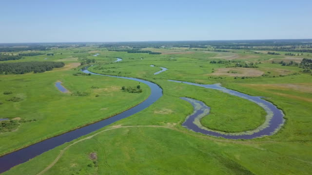 river winding  through biebrza national park with grassy meadows and wetlands - poland stock videos & royalty-free footage