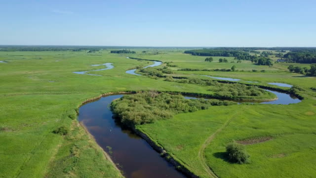 river winding  through biebrza national park with grassy meadows and wetlands - lush video stock e b–roll