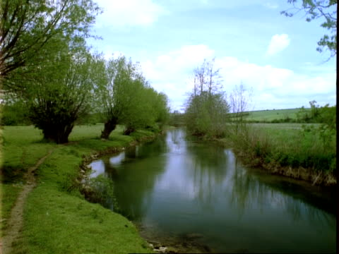 t/l river windrush, lapse time/locked shot, clouds pass left to right, willow trees, may - windrush river stock videos and b-roll footage