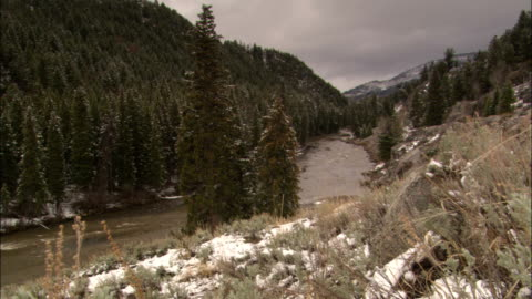 vidéos et rushes de a river winds past a dense evergreen forest in yellowstone national park. - wyoming
