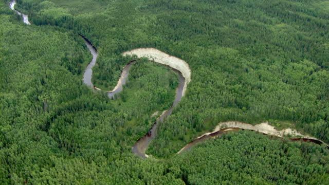 a river winds through a boreal forest near fort mackay, canada. - 寒帯林点の映像素材/bロール
