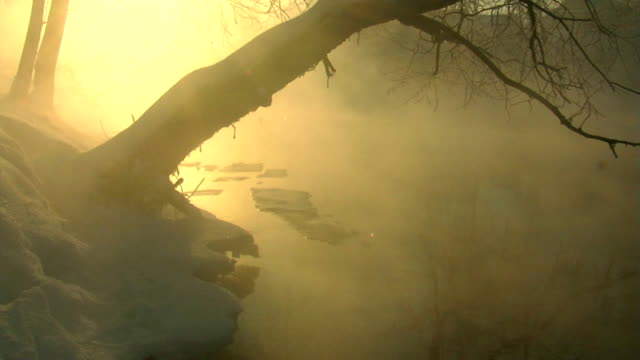 River. Winter. Morning. Fog. Icing.