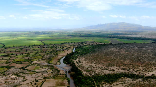 river with green agricultural fields in the rift valley of ethiopia, africa - äthiopien stock-videos und b-roll-filmmaterial