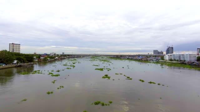 空と水面の雲の反射川 - ヒヤシンス点の映像素材/bロール