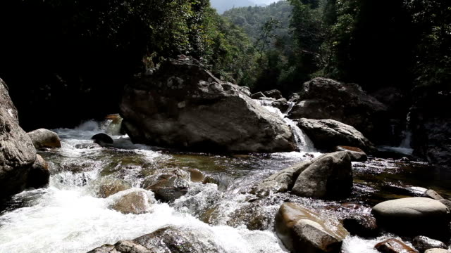 riverbank in the forests of sa pa, vietnam - sa pa stock videos and b-roll footage