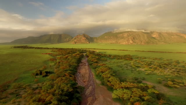 vidéos et rushes de a riverbed cuts through green landscape, tanzania - saison