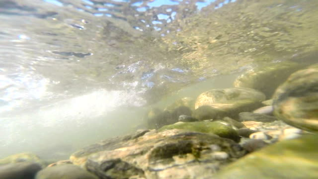 riverbed - underwater - riverbed stock videos & royalty-free footage