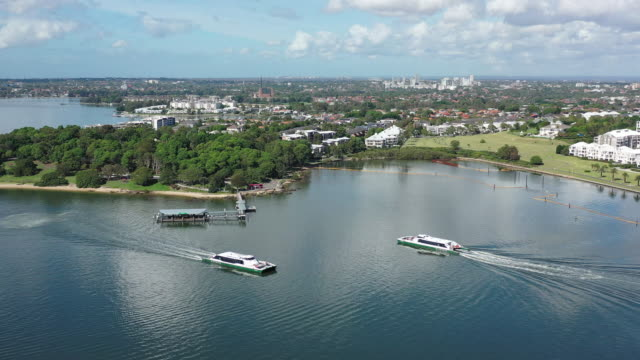 rivercats on the parramatta river - ferry stock videos & royalty-free footage