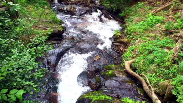 riverfall over rocks downstream - georgia us state stock videos & royalty-free footage