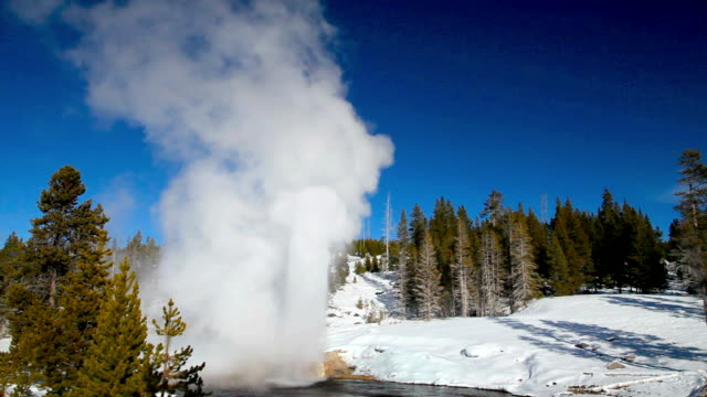 vidéos et rushes de ws riverside geyser erupting along firehole river in winter, yellowstone national park, wyoming, usa - parc national de yellowstone