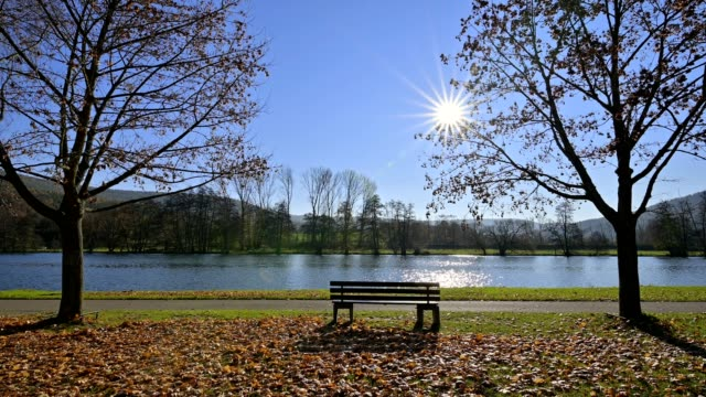riverside with bench and sun on the river in autumn, collenberg, untermain, churfranken, spessart, bavaria, germany - flussufer stock-videos und b-roll-filmmaterial