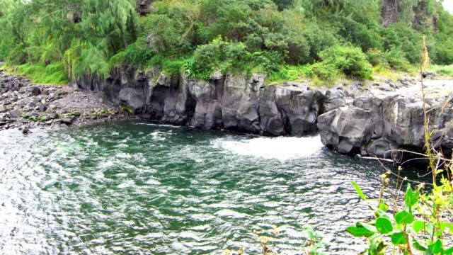 vídeos de stock, filmes e b-roll de cascata de langevin riviere - ilha da reunião - territórios ultramarinos franceses