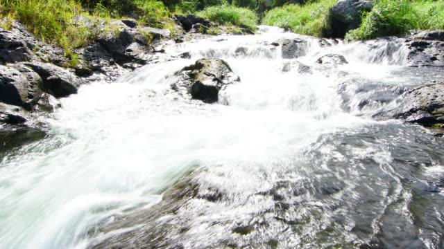 vídeos de stock, filmes e b-roll de vídeo de lapso de tempo de langevin riviere - territórios ultramarinos franceses