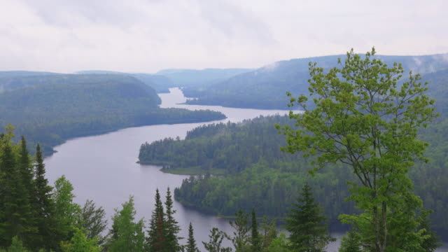 riviere st-maurice, mauricie national park, quebec, canada - parc national stock videos & royalty-free footage