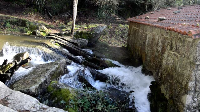 río barosa's natural park - galicia stock videos & royalty-free footage