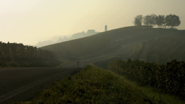 a road across hills with colored vineyards covered by fog in early morning in autumn - piemonte video stock e b–roll