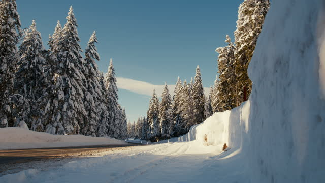stockvideo's en b-roll-footage met ds weg langs sneeuw behandelde sparrenbomen in hooglanden - minder dan 10 seconden