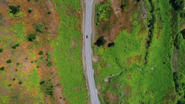 road cutting through green pasture. - high up stock videos & royalty-free footage