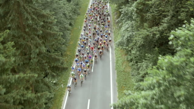 aerial road cycling race through forest - bicycle stock videos & royalty-free footage