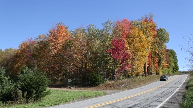 Road during Fall in Northern Pennsylvania