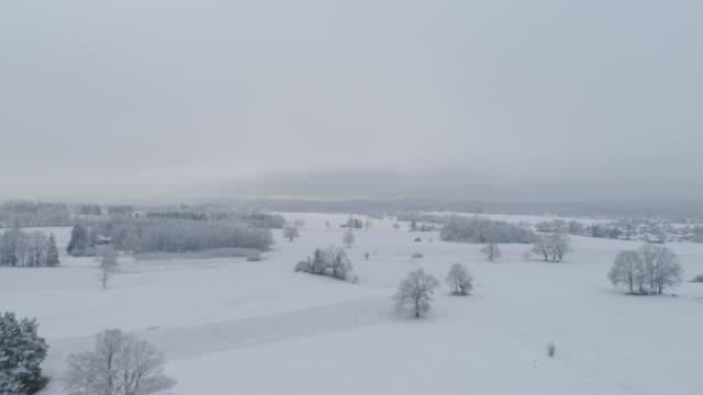 vídeos y material grabado en eventos de stock de road in snowy winter landscape - imagen virada