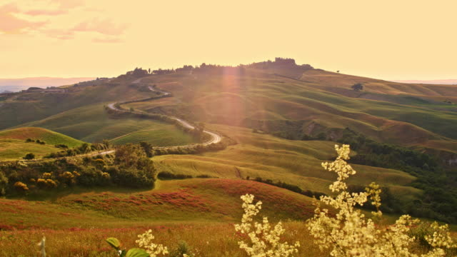 slo mo road in tuscan countryside - rolling landscape stock videos & royalty-free footage