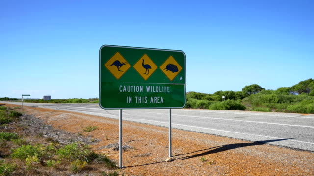 road sign from the australian outback - tourism stock videos & royalty-free footage