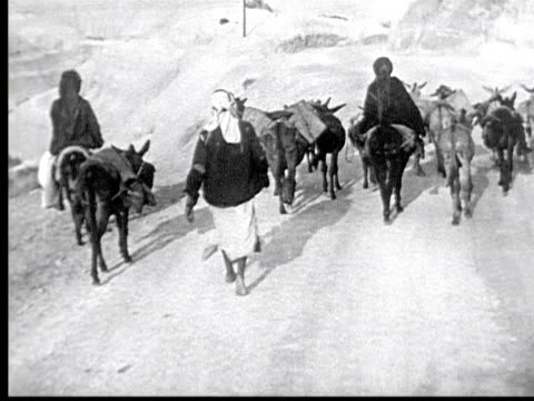 vidéos et rushes de 1925 b/w montage road sign in english + hebrew show directions to jerusalem, jericho + dead sea. family traveling on road w/ donkeys. young woman rides donkey / palestine - baudet