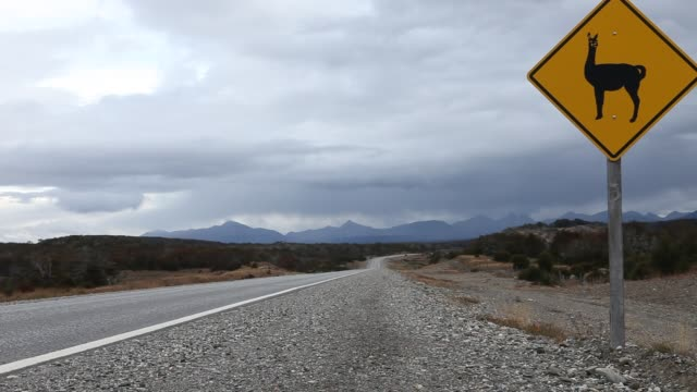 a road sign warns of the existence of guanacos taken near the city of ushuaia in tierra del fuego in argentina - アルゼンチン文化点の映像素材/bロール