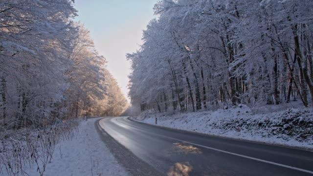 vídeos de stock, filmes e b-roll de slo mo road rodeada por árvores de neve - raw footage