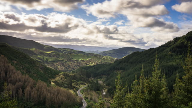 road through mountain pass, new zealand - time lapse - industria forestale video stock e b–roll