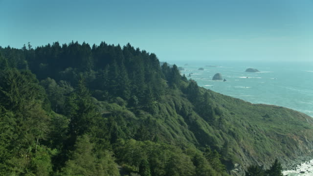 road through redwood trees above pacific ocean - northern california stock videos & royalty-free footage