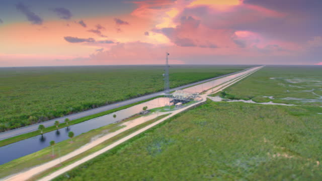aerial road through the everglades, fl at sunset - wetland stock videos & royalty-free footage