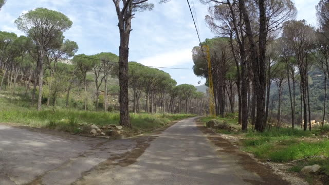 vídeos de stock e filmes b-roll de road to selfaya in the aaley district of lebanon. time lapse. - pinaceae