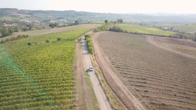 road trip in tuscany with vineyards - aerial view - cars in a row stock videos & royalty-free footage