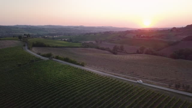 road trip in tuscany with vineyards - aerial view - grape stock videos & royalty-free footage