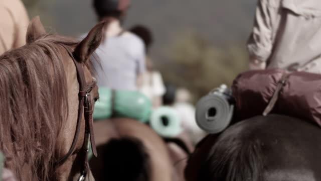 Reis op horsebacks