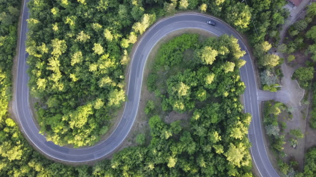 road trip through a forest - aerial point of view - curve stock videos & royalty-free footage