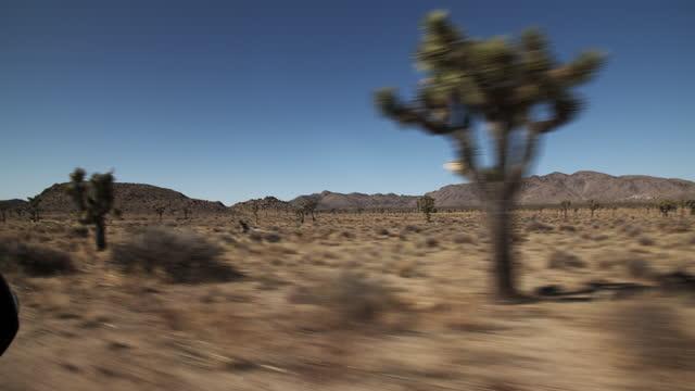 pov road trip through the desert. - joshua tree national park stock videos & royalty-free footage