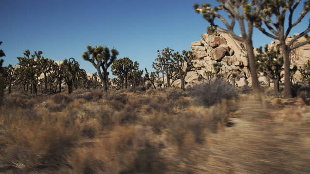 sm road trip through the desert. - joshua tree national park stock videos & royalty-free footage