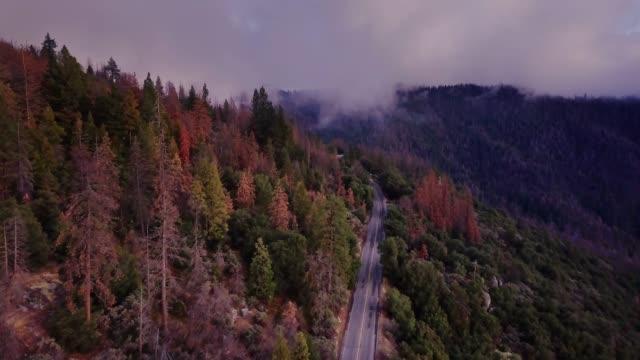 vídeos de stock e filmes b-roll de road twisting down mountainside in california sierra nevada - cordilheira montanha