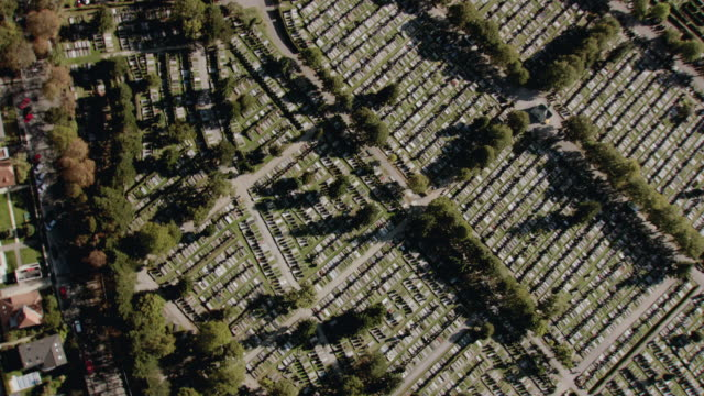 vídeos y material grabado en eventos de stock de aerial roads running between rows of rectangular land plots dotted with trees and green grass - formato buzón