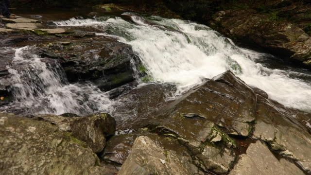 Roaring Fork River in Great Smoky Mountain National Park